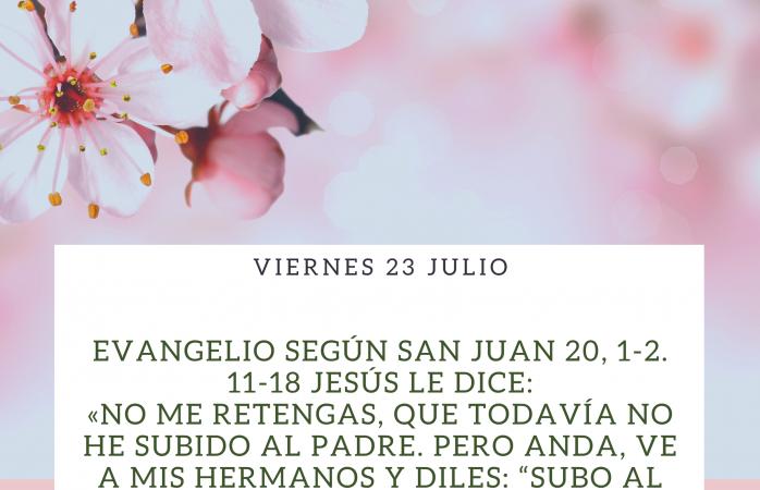 EVANGELIO DEL DÍA 23 JULIO