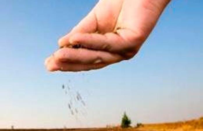 Marcos 4. El pasado pedregoso del terreno fértil